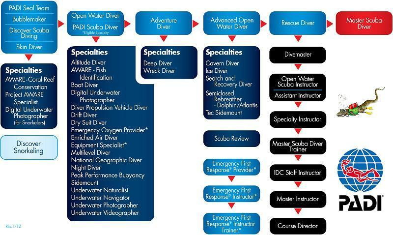 padi recreational scuba diving courses flow chart