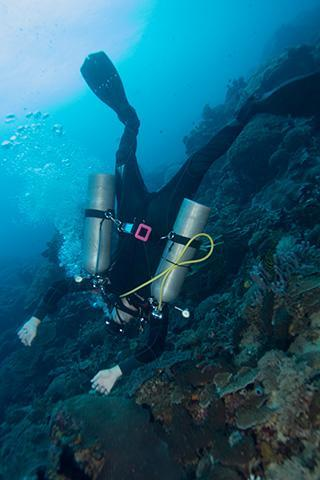 Scuba Diver Underwater Gili Tepekong Bay Bali Indonesia Sidemount Upside Down Vertical 320px