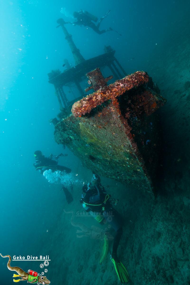 Padang bai dive sites scuba in blue lagoon jepun shark - Padi dive locations ...